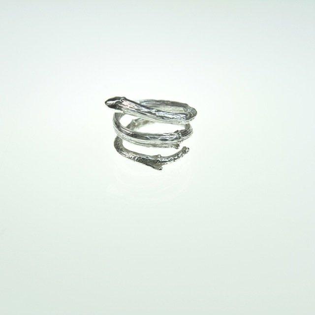 Ring-by-Tanja-Ting.jpg